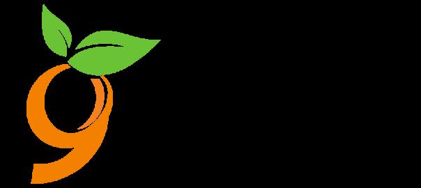 9seeds logo